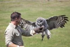 Steve Backshall Wildlife Presenter foto de stock