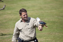 Steve Backshall Wildlife Presenter fotos de stock