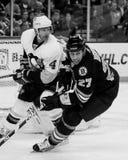 Steve Begin Boston Bruins #27 Lizenzfreie Stockfotografie