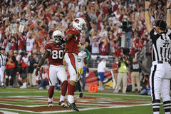 Steve Breaston Wide Receiver para os Arizona Cardinals Fotos de Stock Royalty Free