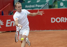 Steve Darcis Royalty Free Stock Photo