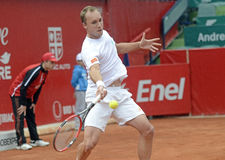 Steve Darcis Royalty Free Stock Image