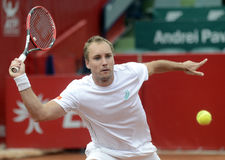 Steve Darcis Stock Photos