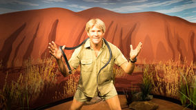 Steve Irwin. Wax statue of the Australian wildlife expert, television personality, and conservationist Steve Irwin. Image taken at the Madame Tussauds museum at Royalty Free Stock Photos
