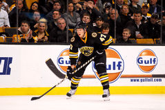 Steve Kampfer Boston Bruins Royalty Free Stock Photography