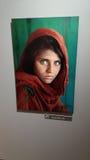 Steve Mccurry  , afghan girl Royalty Free Stock Photography