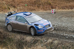 Steve Perez - Ford Focus WRC8 Stock Photo