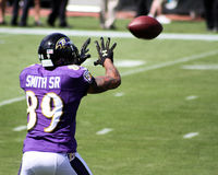 Steve Smith, Sr. stock photos