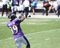 Steve Smith, Sr. Baltimore Ravens WR Steve Smith Sr royalty free stock photo