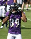 Steve Smith, Sr. Baltimore Ravens WR Steve Smith Sr stock photography
