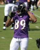 Steve Smith, Sr. Baltimore Ravens WR Steve Smith Sr stock photos