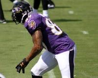 Steve Smith, Sr. Baltimore Ravens WR Steve Smith, Sr royalty free stock photography