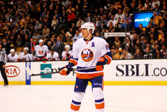 Steve Staios New York Islanders. New York Islanders Defenseman Steve Staios #24 royalty free stock photo