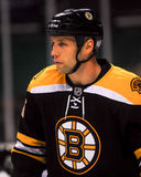 Steve Zaczyna boston bruins -27 Fotografia Royalty Free