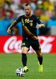 Steven Defour Coupe du monde 2014 Imagem de Stock Royalty Free