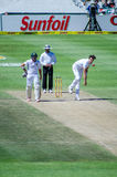 Steven Finn Bowling at Hashim Amla Royalty Free Stock Image