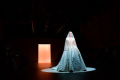 Steven Khalil fashion show Royalty Free Stock Images