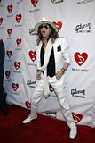 Steven Tyler of Aerosmith on the red carpet. royalty free stock photography