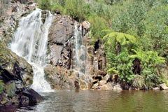 Stevenson Falls Royaltyfria Bilder