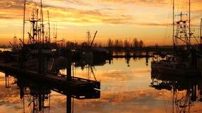 Steveston早晨, Fishermans码头 股票视频