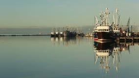Steveston Harbor, Calm Morning, Richmond, BC stock footage
