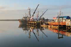 Steveston Harbor, Morning Reflection Royalty Free Stock Photo