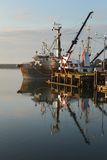 Steveston Harbor, Morning Reflection vertical Royalty Free Stock Photo