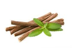 Stevia και licorice Στοκ εικόνα με δικαίωμα ελεύθερης χρήσης