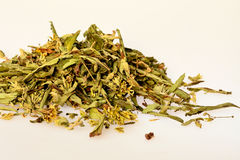 Stevia Stock Image
