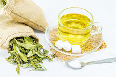 Stevia Stockfotos