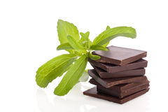 Stevia as ingredient for chocolate Stock Image