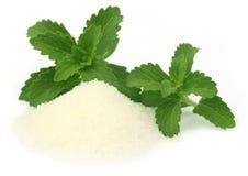 Stevia com suga Foto de Stock