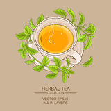 Stevia cup of tea Stock Photography