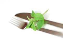 Stevia and cutlery Royalty Free Stock Image