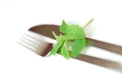 stevia cutlery Стоковое Изображение RF