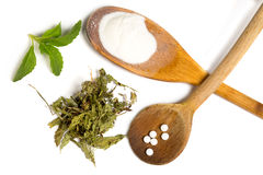 Stevia d'isolement Images libres de droits