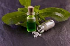 Stevia  essence and globule. Stevia rebaudiana herb essence and globule Royalty Free Stock Image