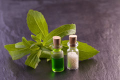 Stevia essence and globule. Stevia rebaudiana herb essence and globule Stock Image