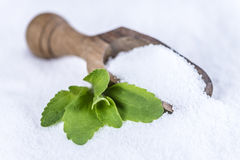 Stevia (granular; selective focus) Royalty Free Stock Photos