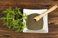 Stevia Stock Photos