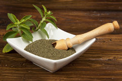 Stevia Stock Photography