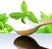 Stevia herb and extract powder in wooden spoon on white background Royalty Free Stock Photography