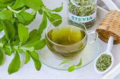 Stevia Infusion. Royalty Free Stock Images