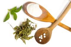 Stevia isolado Imagens de Stock Royalty Free
