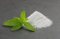 Stevia låter vara med steviapulver på en kritiseraplatta Royaltyfri Foto