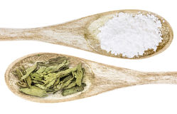 Stevia leaf and white cane sugar Royalty Free Stock Photos