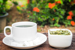 Stevia Stock Images