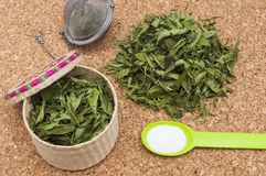 Stevia leaves Royalty Free Stock Photo