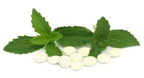 Stevia met tabletten Royalty-vrije Stock Foto's