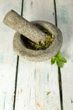 Stevia mortar and pestle Stock Image